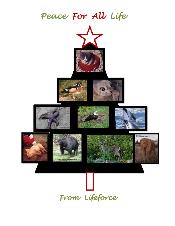 Happy Holidays For All Life