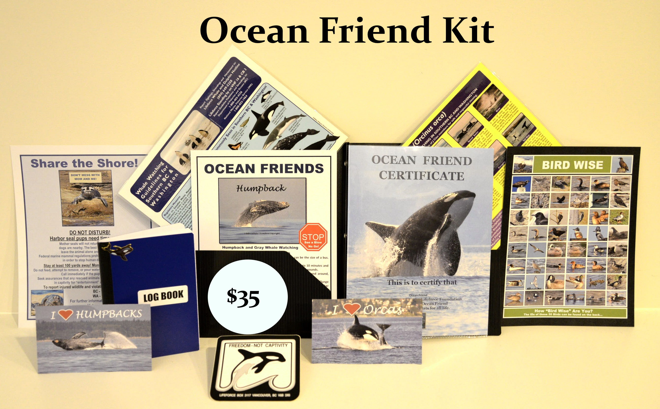 Be An Orca Friend All Year! Help Lifeforce Help Orcas!