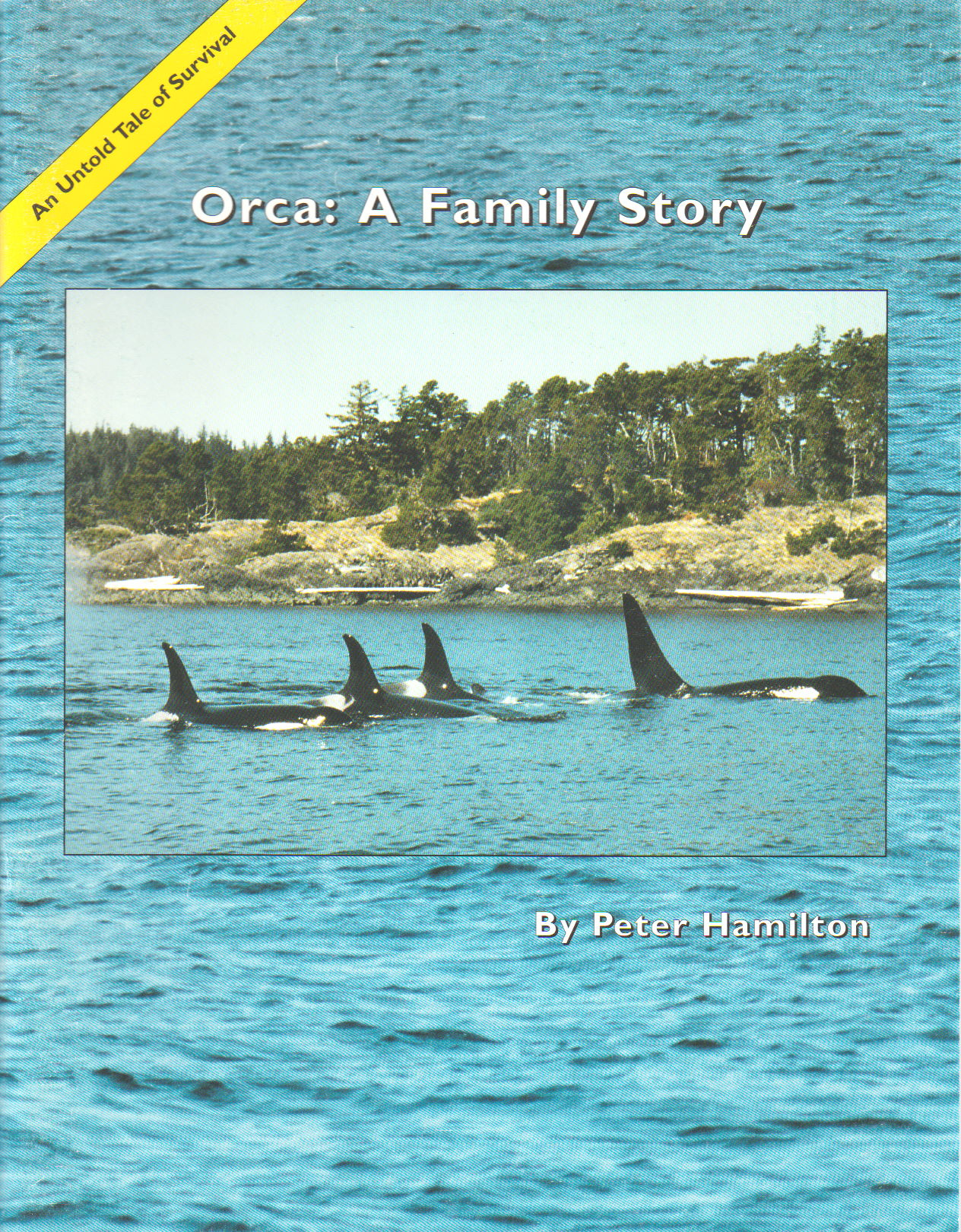 Help Celebrate Orca Action Month! June 2020!