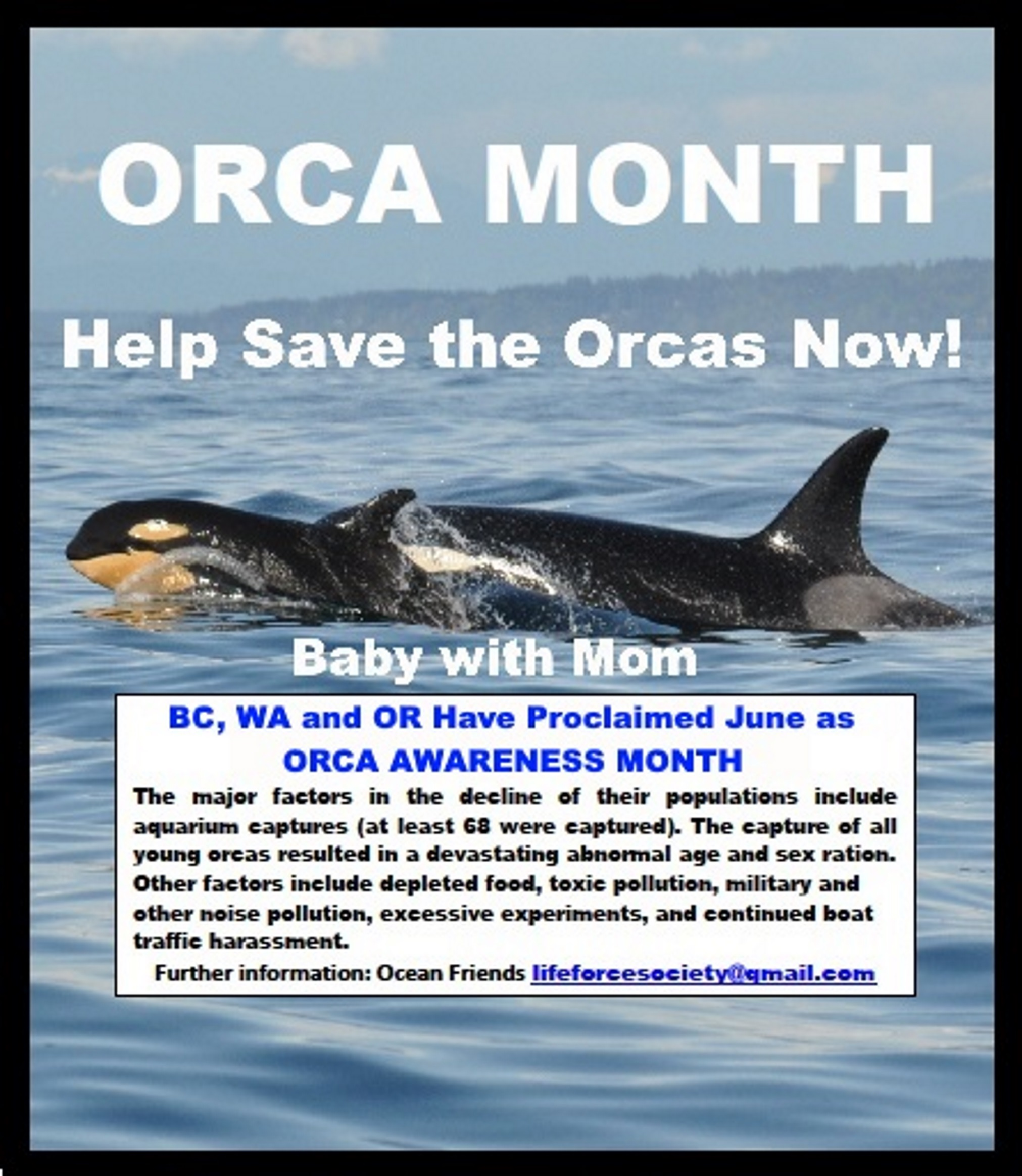 Orca Awareness Month! June 2019!