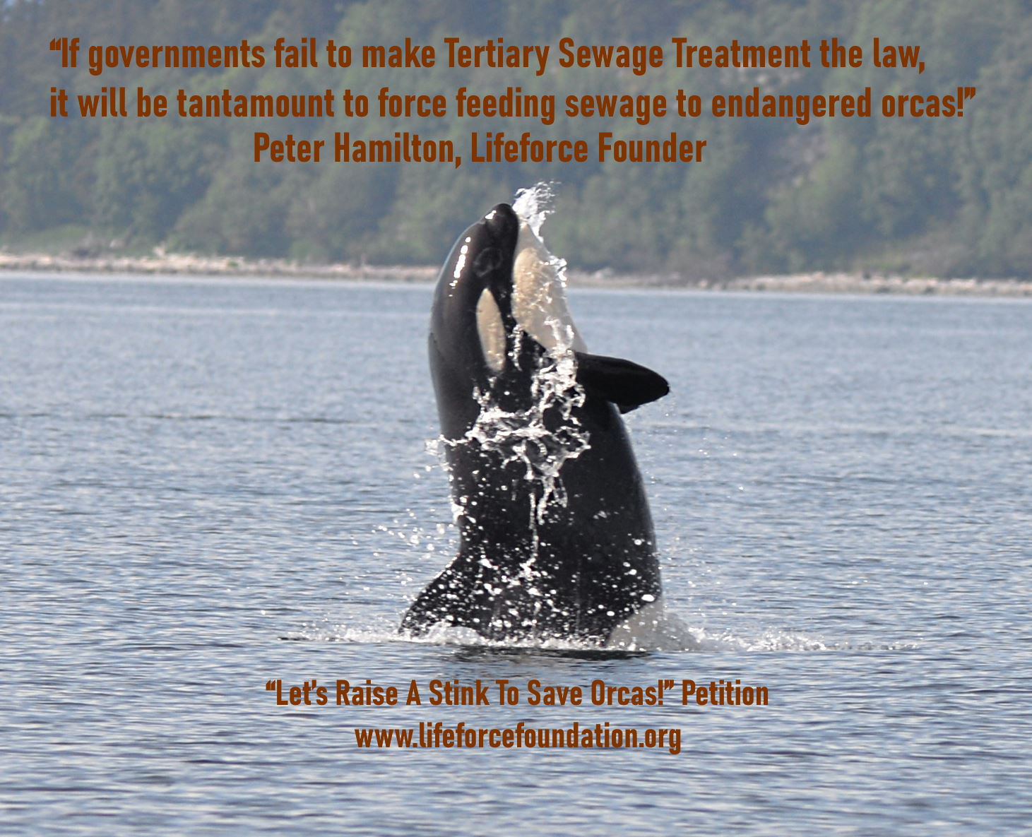 Stop The Comox Valley Sewage Commission Pollution Plans!