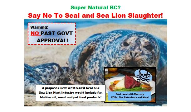 Say No To Seal And Sea Lion Slaughter!