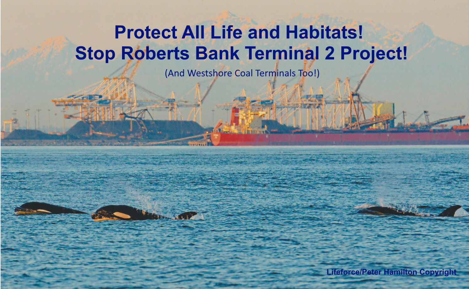 Hoping For The End Of Roberts Bank Terminal 2 Expansion!