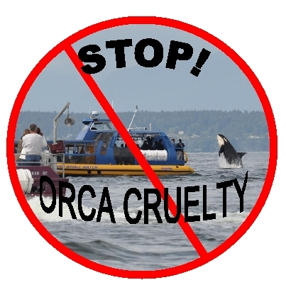New Petition To Stop! Orca Cruelty