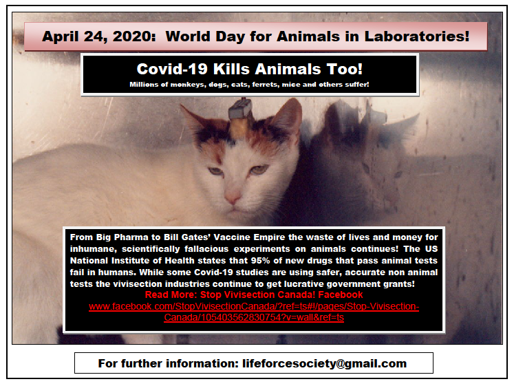 World Day For Animals In Laboratories April 24th, 2020