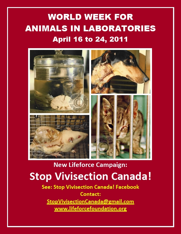 2011 World Week To End Vivisection